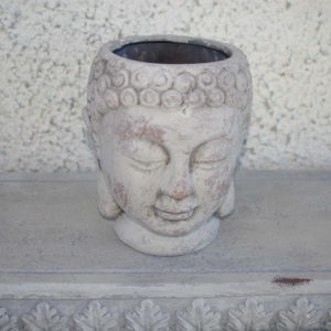 Anum, Budha pea