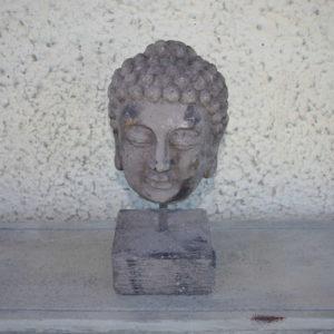 Budha pea,